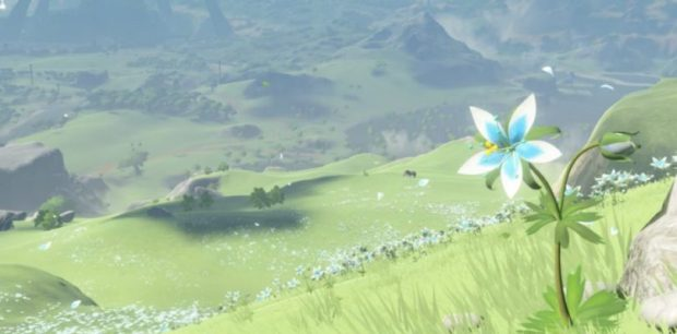 secret-ending-zelda-breath-of-the-wild-screenshot-810x400.jpg